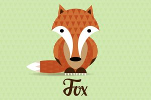fox-illustrazione