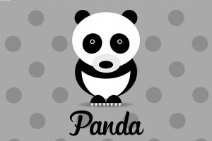 panda-grigio-illustrazione
