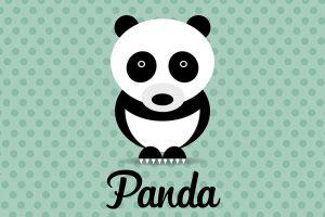 panda-illustrazione